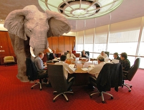 Alphabet CEO and the data elephant in the room