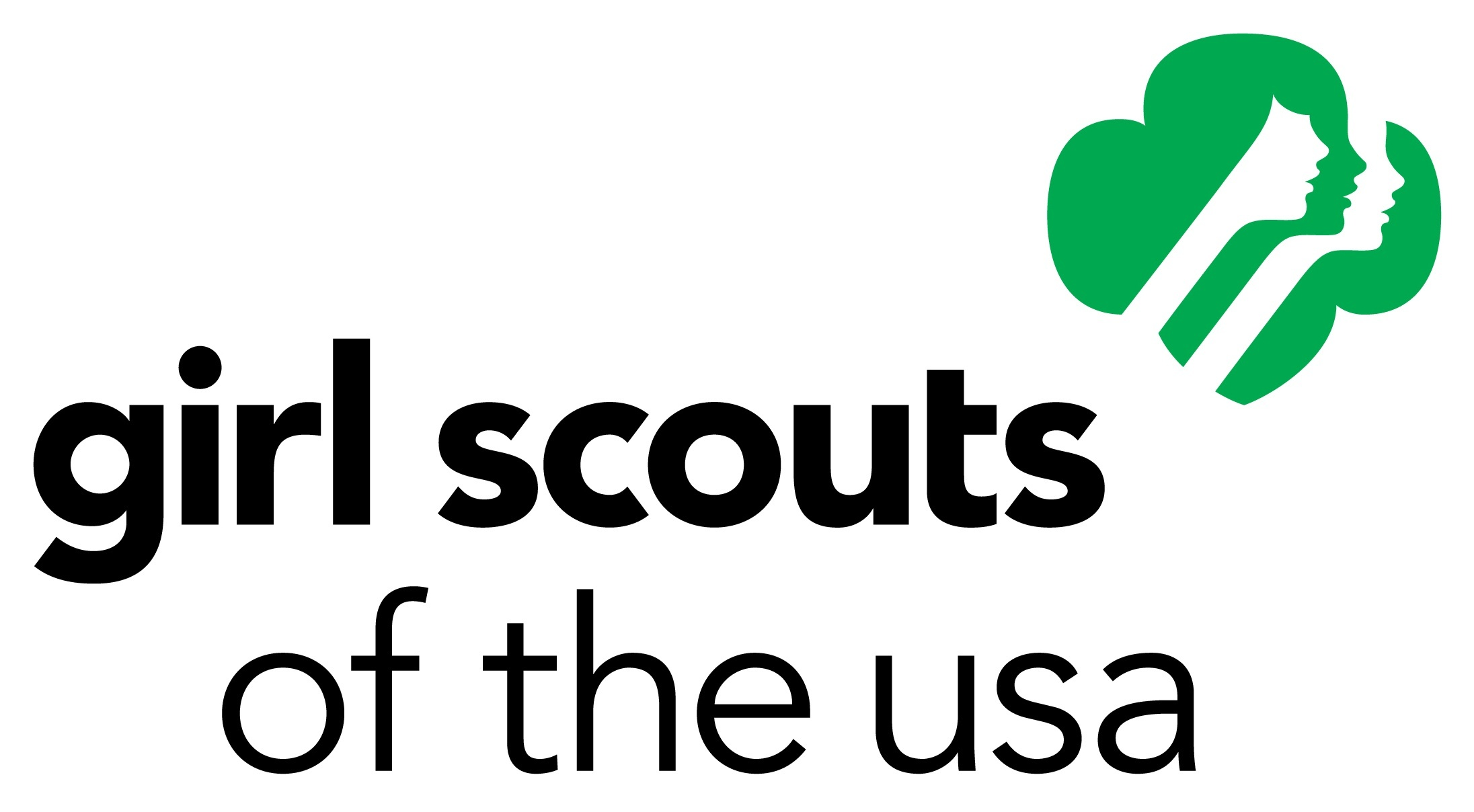 Image result for girl scouts of the us