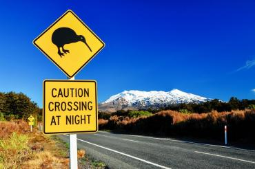 new_zealand_kiwi_bird_road_sign