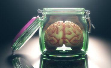Brain in an open storage jar © ktsdesign - Fotolia.com
