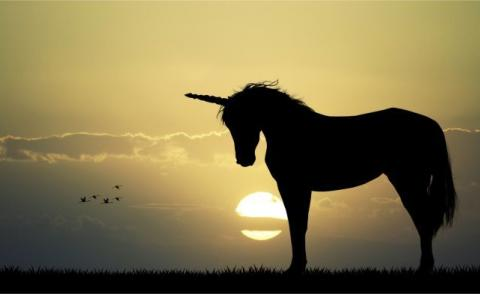 Unicorn silhouetted against sunrise © adrenalinapura – Fotolia.com