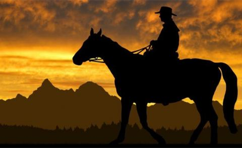 Silhouette cowboy with horse in the sunset © vencav - Fotolia.com