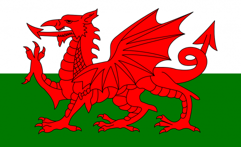 Wales welsh government flag