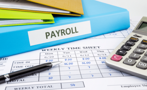 payroll Canva