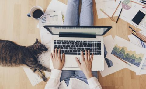 Remote working - woman at home with laptop, phone, business reports and cat © Creative Lab - shutterstock